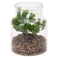 Φυτό σε γυάλινο βαζάκι 19εκ