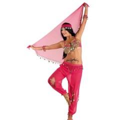 Αραβική Νύχτα στολή χανούμισσας Φούξια Με Μαντήλι