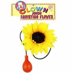 Λουλούδι Κλόουν με τρόμπα νερού
