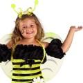 Φτερά παιδικά Μέλισσας 46 χ 43 εκ