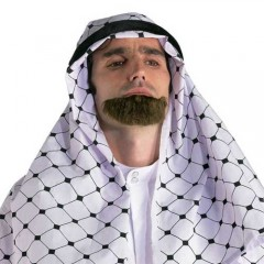 Μούσι Άραβα θεατρικό