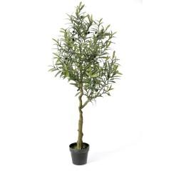 Δέντρο ελιά σε γλάστρα 180εκ